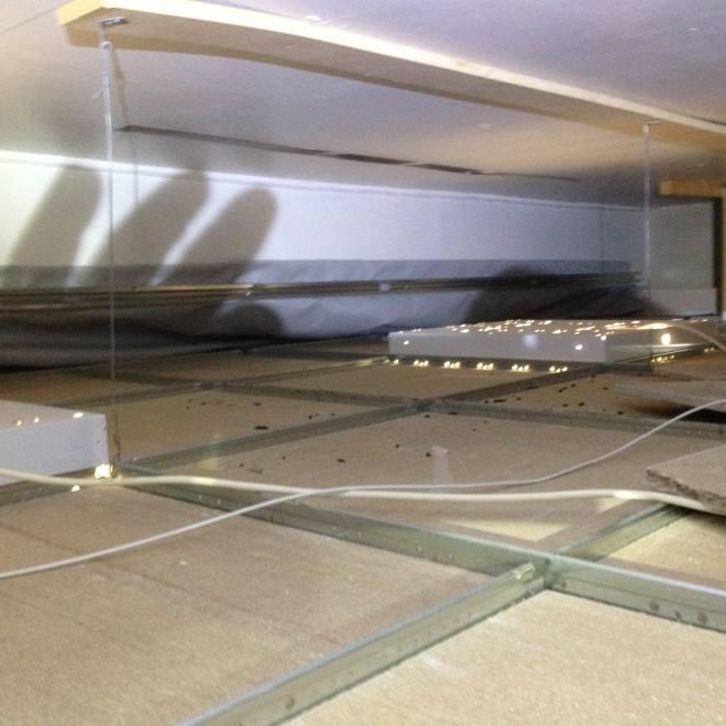 Pest Control and rat control in Blaenau Gwent